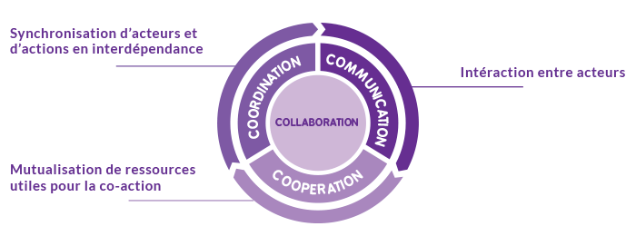 schéma organisation collaborative